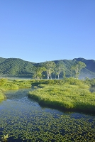 群馬県 中田代の池塘と景鶴山