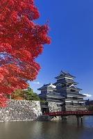 長野県 紅葉と松本城