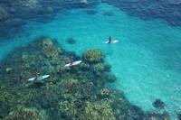 ハワイ マウイ島 オロワル パドルボード
