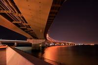 愛知県 中部国際空港連絡道路の夜景