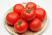 トマト 夏の食