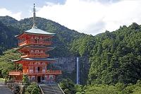 和歌山県 熊野古道
