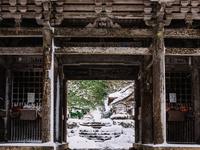 福井県 雪の明通寺