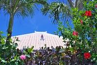 沖縄県 竹富島の民家のシーサー