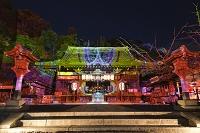 京都市 法輪寺 花灯路 デジタル掛け軸