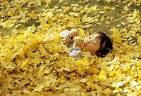 黄葉に埋まる女の子