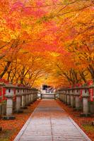 兵庫県 高山寺
