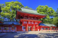 埼玉県 新緑と武蔵一宮氷川神社(大宮氷川神社) 楼門