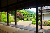 岡山県 頼久寺