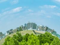 湾曲する緑地景観とビル群