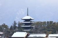 京都府 雪の仁和寺の五重の塔と比叡山