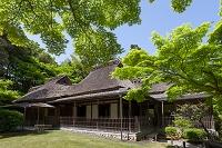 奈良県 奈良市 吉城園