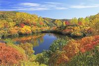 北海道 大雪高原沼のえぞ沼の紅葉