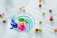 バラの花とクランベリーの実