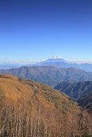静岡県 伝付峠 富士山と紅葉の山並み