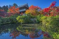 岡山県 宝福寺