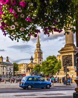 イギリス ロンドン 車