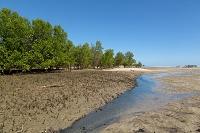 マダガスカル アンツァニティア・リゾート