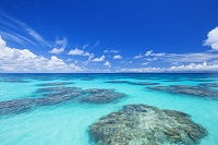 沖縄県 波照間島 珊瑚礁