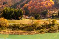 富山県 菅沼合掌集落の紅葉