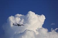 東京都 入道雲と飛行機