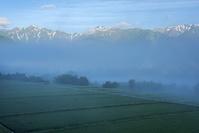 長野県 朝もやの田園と唐松岳