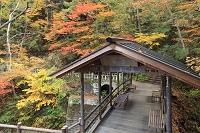 長野県 鹿教湯温泉 五台橋