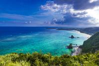 沖縄県 名護市 ジュゴンの見える丘
