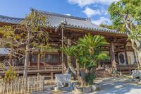 山口県 光明寺