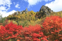 北海道 紅葉の層雲峡