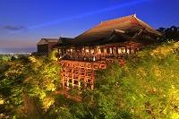 京都府 清水寺の千日詣り