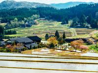 石川県 金蔵の棚田