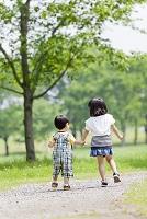 公園で手を繋いで歩く姉と弟の後ろ姿