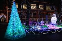 京都府 平安女学院 クリスマスイルミネーション