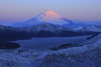 神奈川県 朝日に染まる富士山と雪景色の芦ノ湖