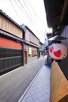 京都府 先斗町 飲食店街の町並み