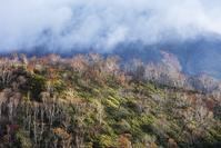 北海道 晩秋の山と山霧