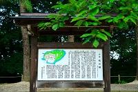 島根県 松江城 案内板