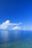 鹿児島県 サンゴ礁と積乱雲と沖縄本島