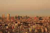 東京都 東京タワー 恵比寿から 夕景