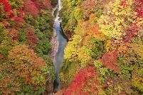 秋田県 小安峡