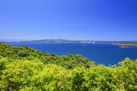 兵庫県 新緑と鳴門海峡と大鳴門橋