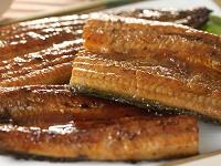 国産鰻の蒲焼き
