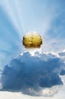 光線と模型の脳