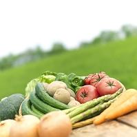 野菜の集合