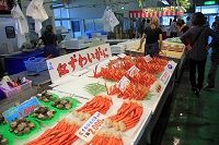 鳥取県 境港さかなセンター 紅ズワイガニ