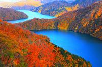 福島県 奥会津 紅葉の田子倉湖