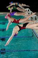 水に飛び込む競泳選手たち