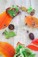 紅葉 秋の花飾り