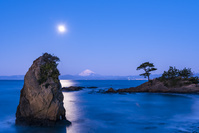 神奈川県 月夜の富士山